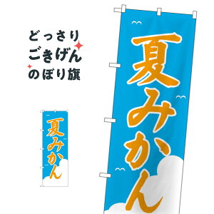 夏みかん のぼり旗 2237 みかん・柑橘類