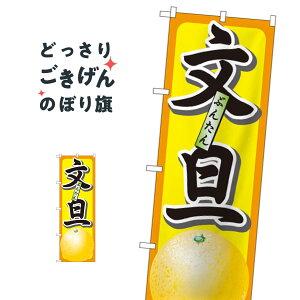 文旦 のぼり旗 7402 みかん・柑橘類