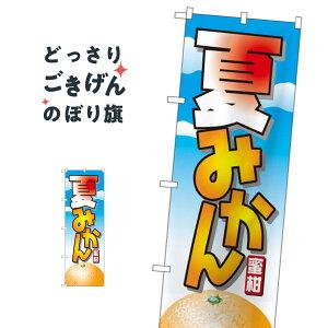 夏みかん のぼり旗 7403 みかん・柑橘類