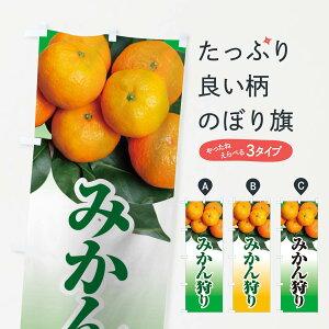 【ネコポス送料360】 のぼり旗 みかん狩りのぼり 1GXK ミカン みかん・柑橘類