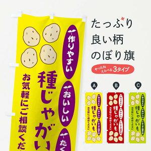【ネコポス送料360】 のぼり旗 種じゃがいものぼり 21C6 野菜