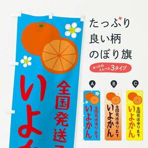 【ネコポス送料360】 のぼり旗 いよかんのぼり 25W6 全国発送します ミカン 蜜柑 みかん・柑橘類