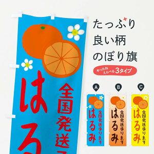 【ネコポス送料360】 のぼり旗 はるみのぼり 25WC 全国発送します ミカン 蜜柑 みかん・柑橘類