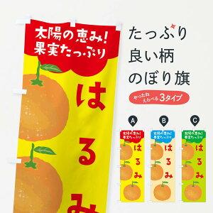【ネコポス送料360】 のぼり旗 はるみのぼり E42A オレンジ ミカン みかん みかん・柑橘類