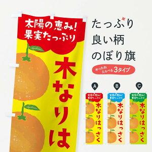 【ネコポス送料360】 のぼり旗 木なりはっさくのぼり E42C オレンジ ミカン みかん みかん・柑橘類