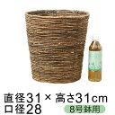 鉢カバー バナナ皮 8号鉢用 直径26cm以下の鉢に対応 鉢 プランターカバー 室内 かわいい カワイイ シンプル ナチュラ…