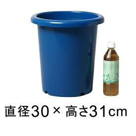 長鉢 10号〔30cm〕 青