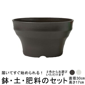 おしゃれ 植木鉢 土・肥料のセット フレグラーボール 30cm と培養土と鉢底石と肥料のセット