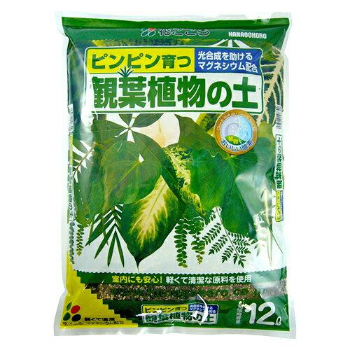 観葉植物の土 12L〔リットル〕【花ごころ】