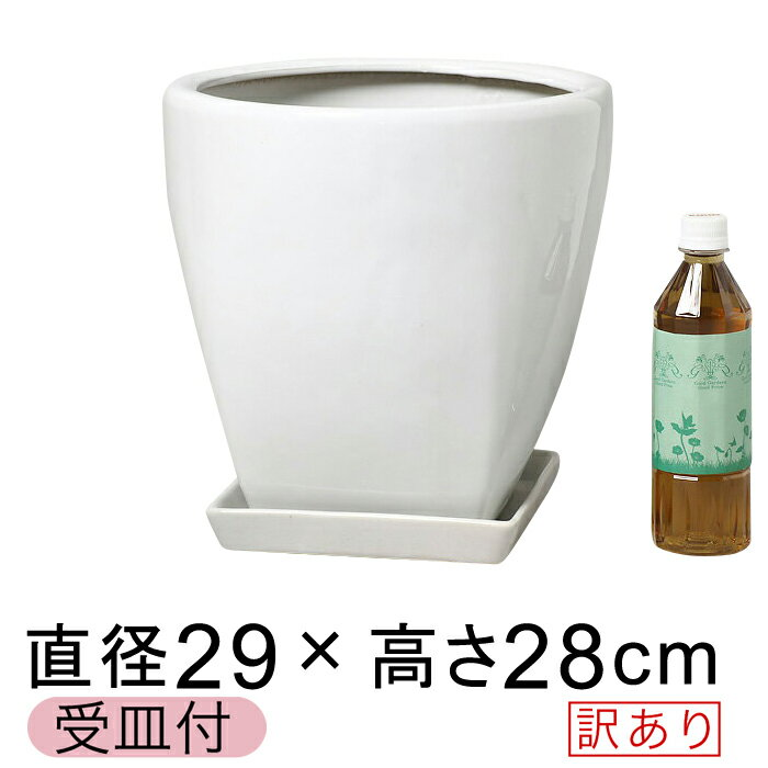 【訳あり】 ツルツル 上丸下角型 陶器鉢 白 つや有 M 29cm 11リットル 受皿付 植木鉢 7号鉢用 鉢カバー[of25]