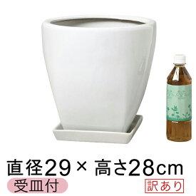 【訳あり】 ツルツル 上丸下角型 陶器鉢 白 ホワイト つや有 M 29cm 11リットル 受皿付 植木鉢 陶器 7号鉢用 鉢カバー [of20]