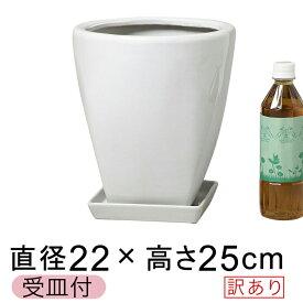 【訳あり】 ツルツル上丸下角型 陶器鉢 白 ホワイト つや有 S 22cm 5.5リットル 受皿付 植木鉢 鉢カバー 陶器 [of25]