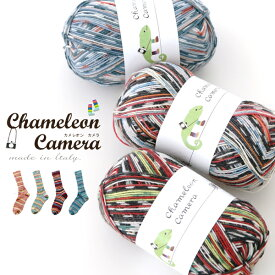 【677】Chameleon Camera(カメレオン カメラ)[毛(防縮ウール)75%ナイロン25% 合細 95-100g玉巻(約420m) 全12色]毛糸ピエロ♪毛糸/編み物/手編み/手芸