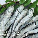 【進物用】伊吹島産・上質煮干いりこ(大羽)3kg