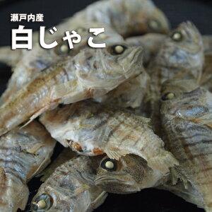 瀬戸内海・愛媛の新鮮な海の幸!!!美味しい!白じゃこ65g/乾物/珍味/おつまみ/つまみ/おかず/じゃこ/海産物