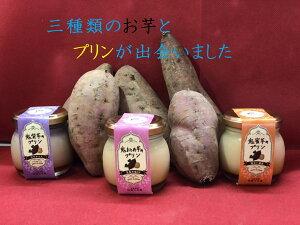 お芋プリンと安納芋焼き芋2キロ(プチサイズ)詰合せセット さつまいもプリン 安納芋 紫芋 芋おとめ 3種類の味 冷凍 濃厚プリン 送料無料