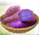 長崎県 五島列島産 オーガニックプチ紫芋3キロ 送料込 さつまいも むらさきいも パープルスイート