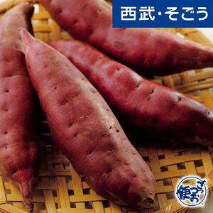 さつまいも 加賀野菜 伝統野菜 旬 JA金沢市 加賀野菜 五郎島金時 5kg