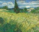 Gogh 5079