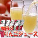 りんごジュース ストレート 100% 無添加 送料無料【増田のりんごジュース 20パック】 サンふじ無添加 ストレート 酸化…