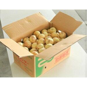 野菜 玉ねぎ タマネギ 佐賀県産 新たまねぎ M〜2L 約20kg 風袋込 同梱不可 送料無料