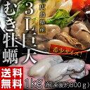 《送料無料》数量限定入荷 広島産 3Lサイズ 巨大牡蠣 1kg (加熱用) ※冷凍【冷凍同梱可能】 ☆