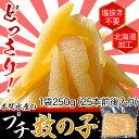 北海道加工 本間水産 プチ数の子 1袋250g(25本前後入り) ※冷凍 【冷凍同梱可能】☆