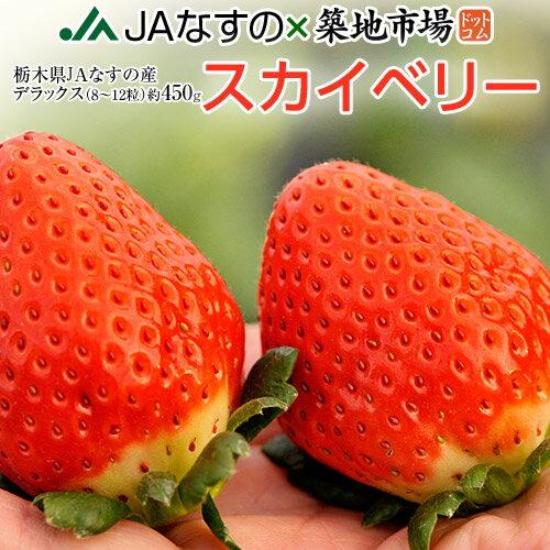 いちご 栃木県産 「スカイベリー」 1箱 DX(デラックス)約450g(8〜12粒) ※冷蔵