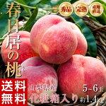 《送料無料》山梨県産「春日居の桃」秀品化粧箱入り5〜6玉約1.4g