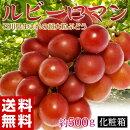 送料無料石川県産超大粒ぶどう「ルビーロマン」約500g化粧箱入葡萄(ブドウ)※冷蔵