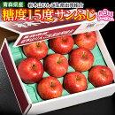 りんご送料無料青森県産「糖度15度サンふじ」約3kg(7〜13玉)岩木山りんご生産出荷組合