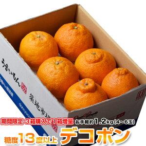 【3箱買えば1箱オマケ】 デコポン でこぽん 熊本県産 約1.2kg 4〜6玉 送料無料