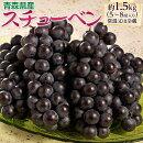 葡萄ぶどうブドウ青森県産黒ぶどうスチューベン5〜8房約1.5kg送料無料常温又は冷蔵