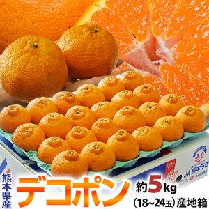 母の日 2021 ギフト デコポン 熊本県産柑橘 約5kg 18〜24玉 産地箱入 常温 送料無料