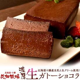 ケーキ チョコレート 花畑牧場 濃厚 生 ガトーショコラ 480g×2本セット 業務用 プレゼント おやつ チョコケーキ 冷凍 同梱可能