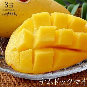 マンゴー タイマンゴー ナムドックマイ タイ産 3玉 合計約900g 果物 フルーツ ギフト 常温 送料無料