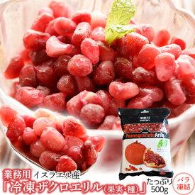 ザクロ ざくろ 業務用 冷凍 ザクロエリル (果実・種) 大容量 500g [冷凍同梱可能] 冷凍フルーツ 冷凍果実 ジュース スムージー