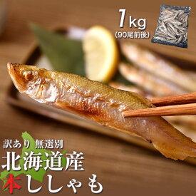魚 ししゃも シシャモ 訳あり 無選別 北海道産 本ししゃも 1kg 90尾前後 おかず 冷凍 冷凍同梱可能 送料無料