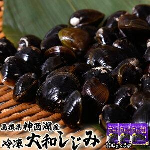 しじみ シジミ 蜆 島根県神西湖産 大和しじみ 大サイズ M 100g×3袋 貝 冷凍 冷凍同梱可能
