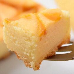訳あり!濃厚クラシックチーズケーキ(マンゴー)