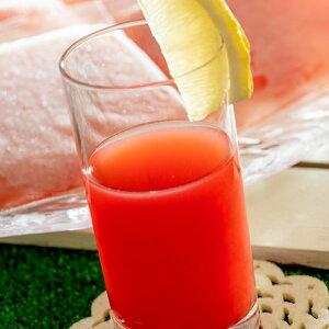 スイカジュース 尾花沢スイカ100%ジュース 100g×15袋 [酸化防止剤無添加]冷凍 西瓜 すいか スイカ ジュース