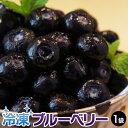 冷凍 ブルーベリー 500g [冷凍同梱可能] 冷凍フルーツ 冷凍果実 ジュース スムージー