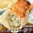 餃子 ぎょうざ 美ら島あぐー豚100%使用 あぐー豚の餃子 20個入り(480g)×2パックセット 贈り物 おつまみ お弁当 …