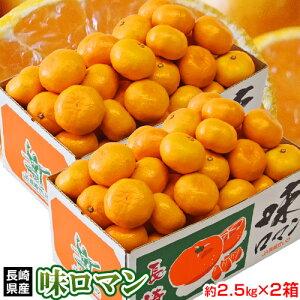 みかん ミカン 高糖度 長崎県産 味ロマン 約2.5kg S〜L×2箱 糖度12度選別 送料無料