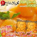 タイ産 マハチャノック種 『完熟カットマンゴー』 約500g×2袋 たっぷり1キロ ※冷凍 【冷凍同梱可能】