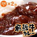 冷凍カレーは美味しい!飛騨牛カレー(200g×2)