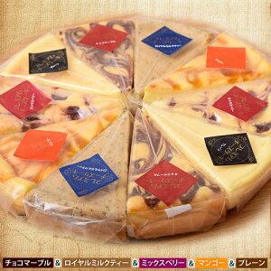 チーズケーキ 濃厚『クラシックチーズケーキ』プレーン ミルクティー チョコマーブル マンゴー ミックスベリー 5種×2P スイーツ ケーキ 洋菓子 お菓子 ギフト プレゼント おやつ お礼 贈り