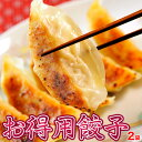 餃子 ぎょうざ お得用餃子 大容量 100個セット 17g×50個×2袋 ギョウザ お惣菜 お弁...