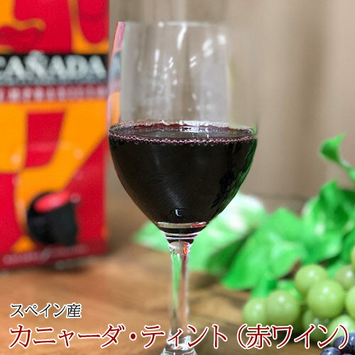 ハウスワイン カニャーダブランコ 赤ワイン 3L×4パック 業務用ケース ワイン ボックス BOX イエノミ 家飲み 送料無料