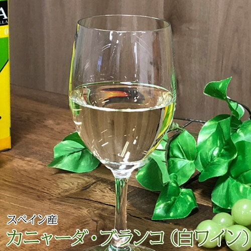 ハウスワイン カニャーダブランコ 白ワイン 3L ワイン ボックス BOX イエノミ 家飲み 送料無料